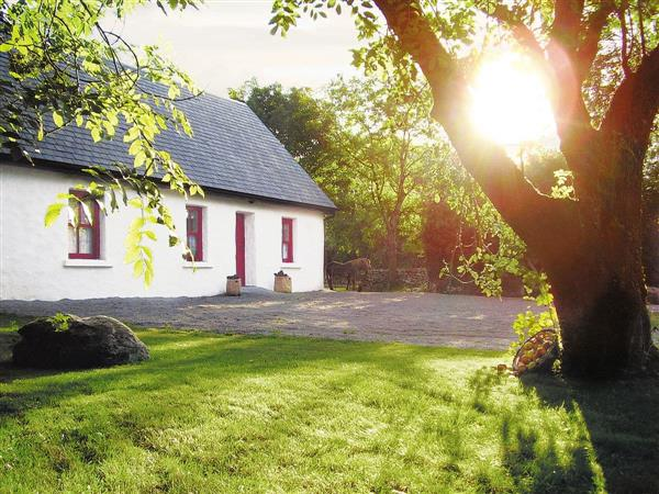 Knockbroughan Cottage in Galway