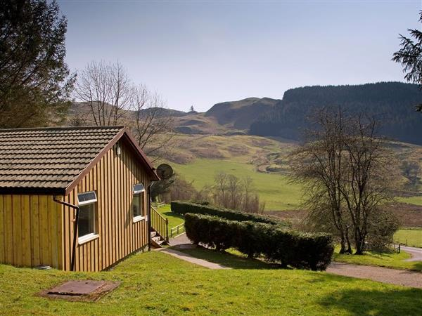 Lagnakeil Lodges - Conifers in Argyll