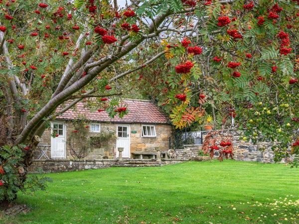Laskill Grange - Foxglove Cottage in North Yorkshire
