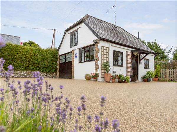 Little England Cottage in Dorset