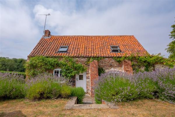 Little Wells in Norfolk