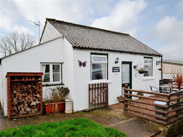 Little Whiteleigh in Whitstone, near Bude, Cornwall