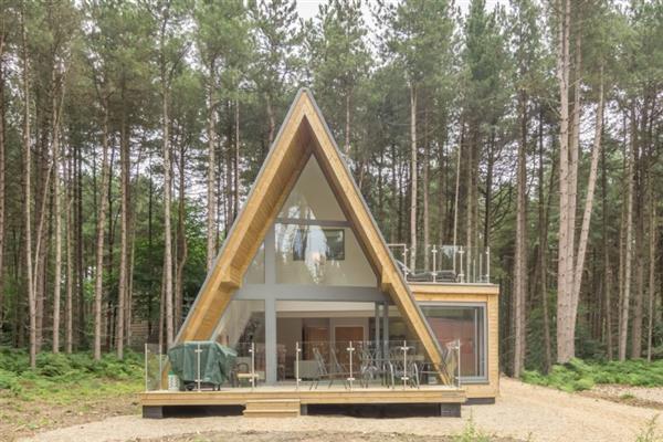 Liz's Lodge in Norfolk