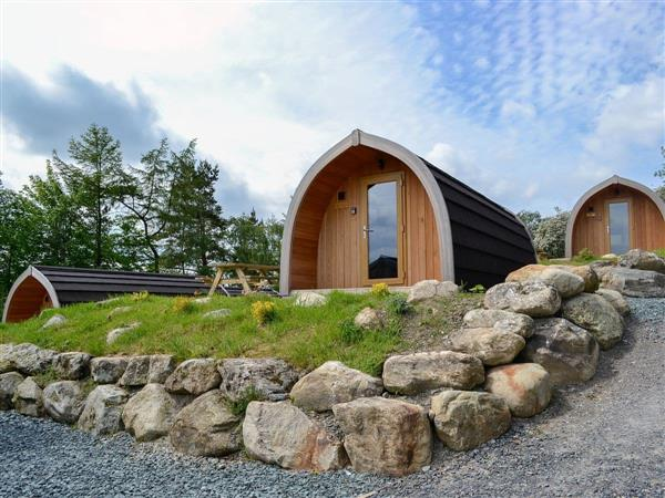 Lowside Farm Lodges - Lea Field Lodge from Cottages 4 You