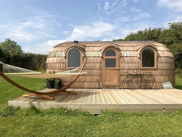 Lydcott Glamping - Prosecco in Cornwall