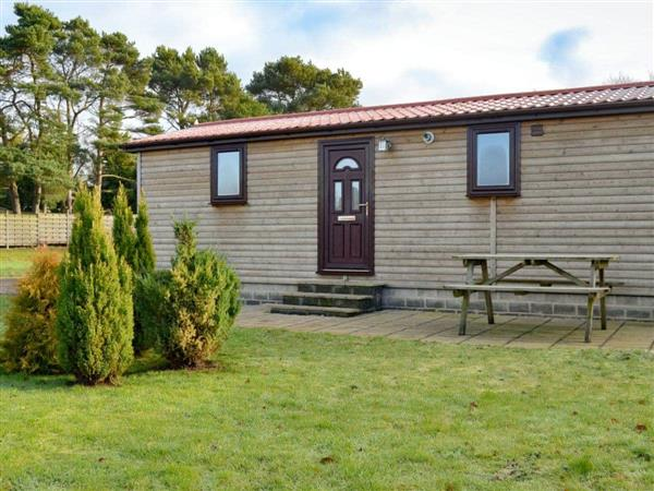 Lynby Lodges - Pine Lodge in North Yorkshire