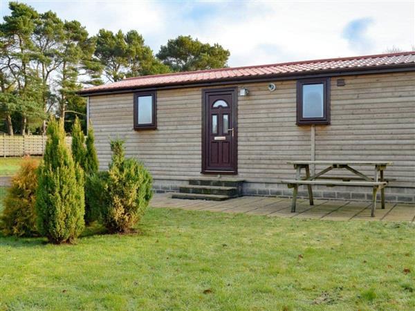 Lynby Lodges - Pine Lodge, North Yorkshire