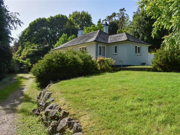 Magnolia Lake - The Blue House in Devon