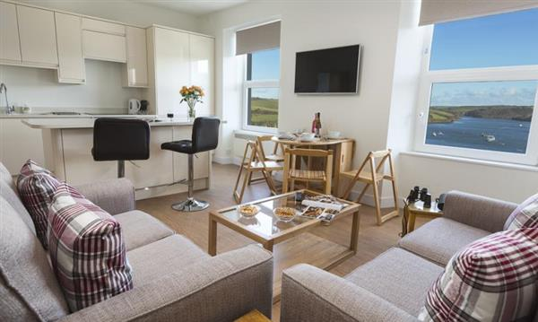 Main Top Apartment in Devon