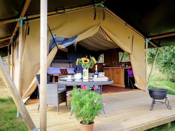 Manor Farm - Tent 3 Oak Apple Lodge, Dorset