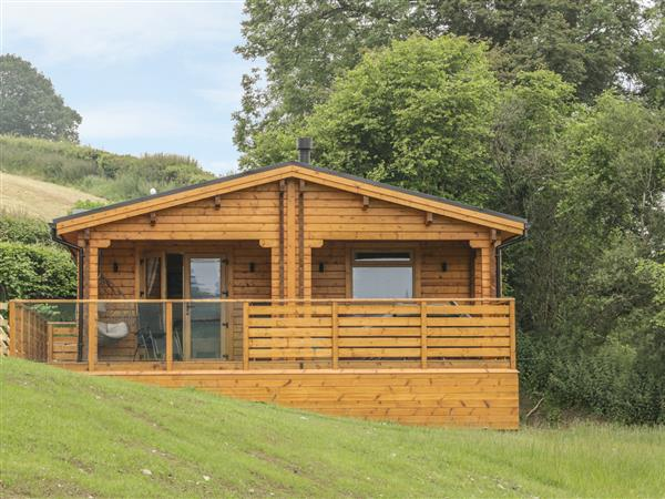Manor Farm Lodges - Red Kite Lodge in Powys