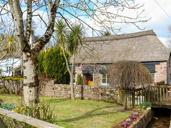 Meadow Thatch in Devon