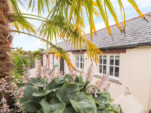 Meadowview Cottage in Cornwall