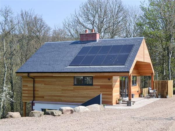 Milton Farm Lodges - Snowdrop Lodge in Perthshire