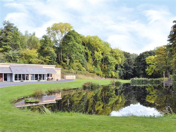 Nant y Gain Fishing Lodges - Badger Lodge in Clwyd