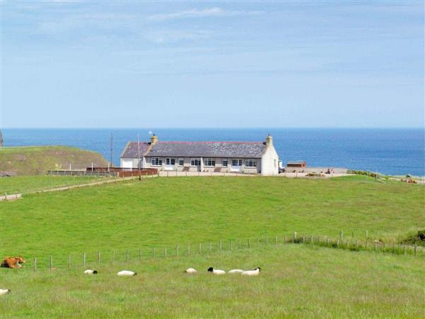 Nethermill Cottages - Mill Shore Cottage in Aberdeenshire