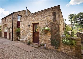 Nettle Cottages - Little Nettle Cottage in North Yorkshire
