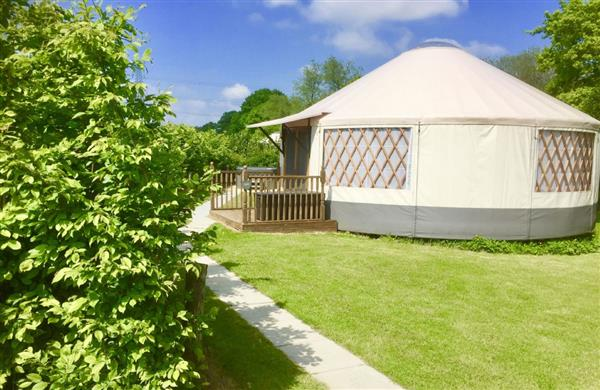 Oak Yurt in East Sussex