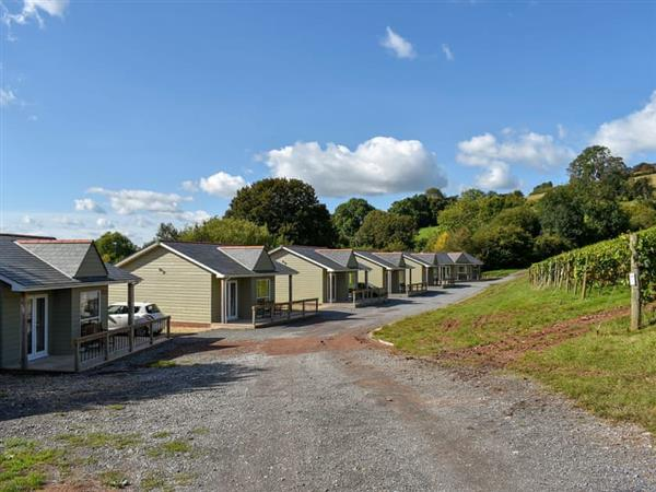 Old Walls Vineyard Lodges - Auxerrois in Bishopsteignton, near Teignmouth, Devon