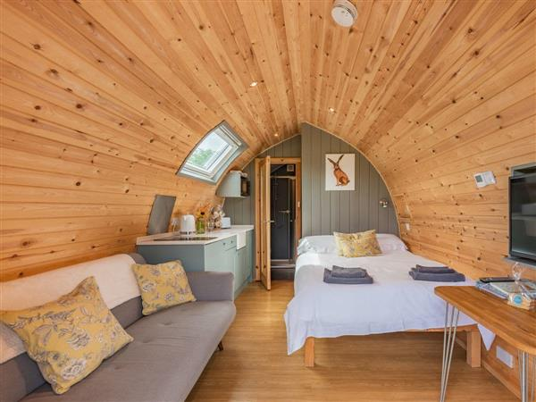Orchard Glamping - Willow, Catterall, Lancashire