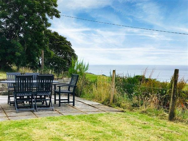 Owl Cottage in Sutherland