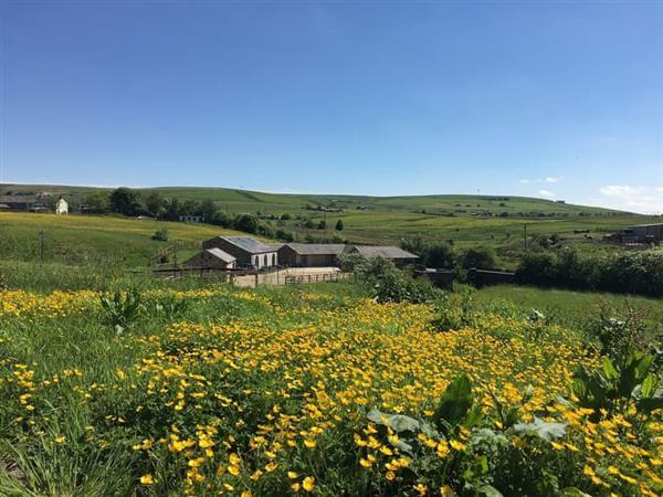 Paddock in Lancashire