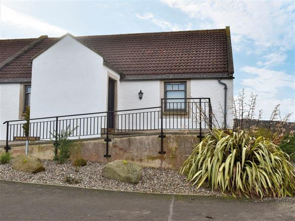 Parkley Farm Holiday Cottages - Rowan Tree Cottage in West Lothian