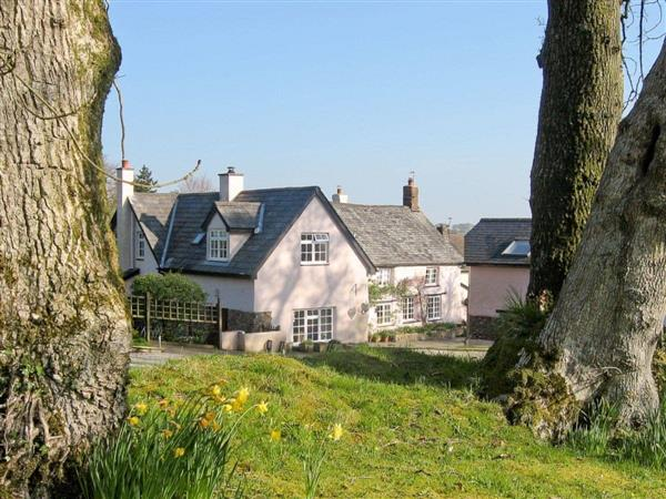 Peartree Cottage in Devon