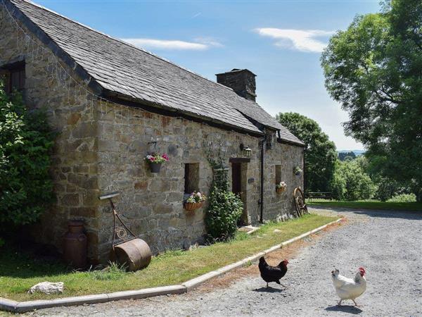 Penrallt Y Cordde - Bwthyn Barri in Dyfed