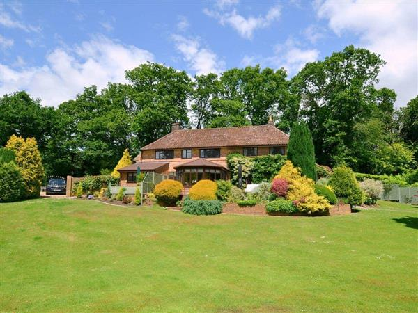 Picket Hill New Forest Retreat - Alices Lodge in Hampshire