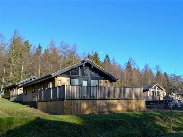 Pine Tree Lodge in Northumberland
