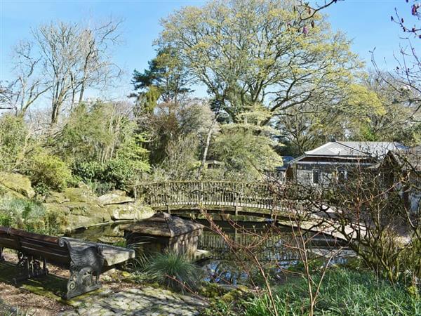 Pinetum Gardens - The Bridge 1 in Cornwall