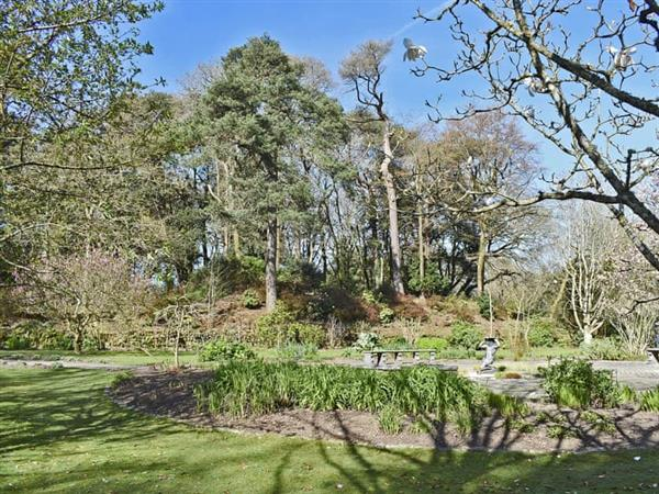 Pinetum Gardens - The Bridge 3 in Cornwall