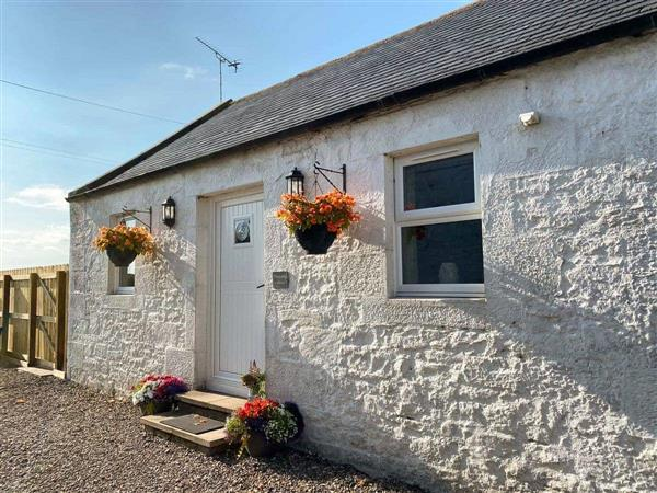 Pleacairn Cottage in Dumfriesshire