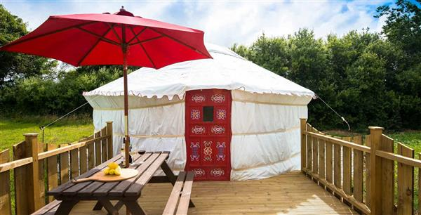 Poppy Yurt in Cornwall