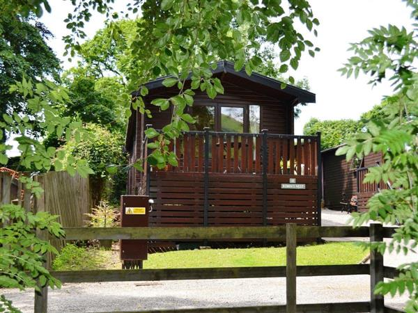 Robins Nest - Burnside Park in Cumbria