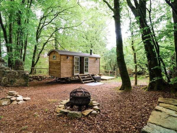 Rock View Shepherd's Hut in Devon