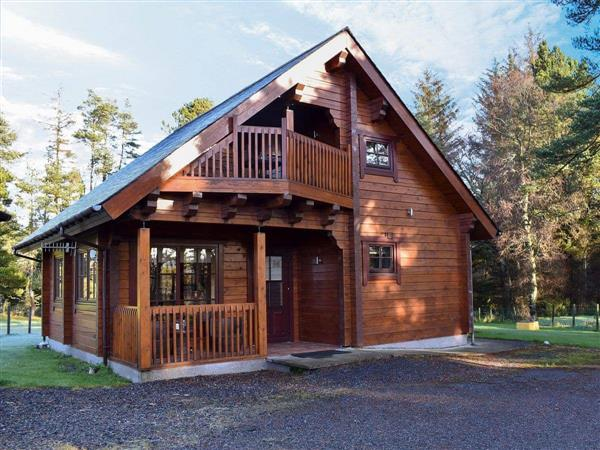 Roe Deer Log Cabin in Mulben, near Keith, Moray, Banffshire