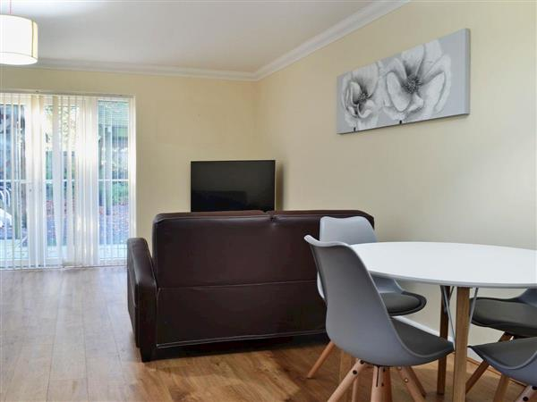 Room and Roof Serviced Apartments - Arcadia Apartment 8 in Hampshire