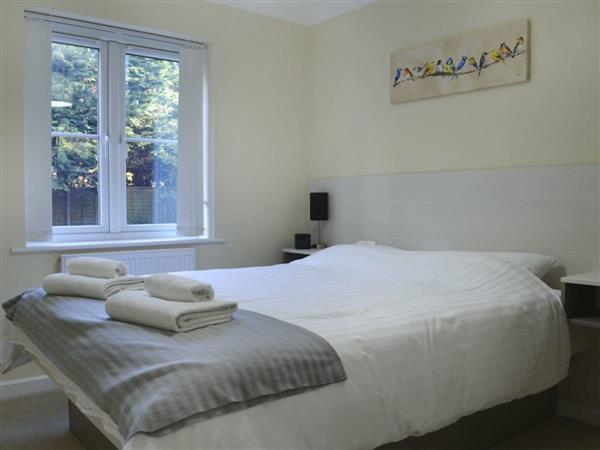 Room and Roof Serviced Apartments - Ventura Apartment 10 in Hampshire