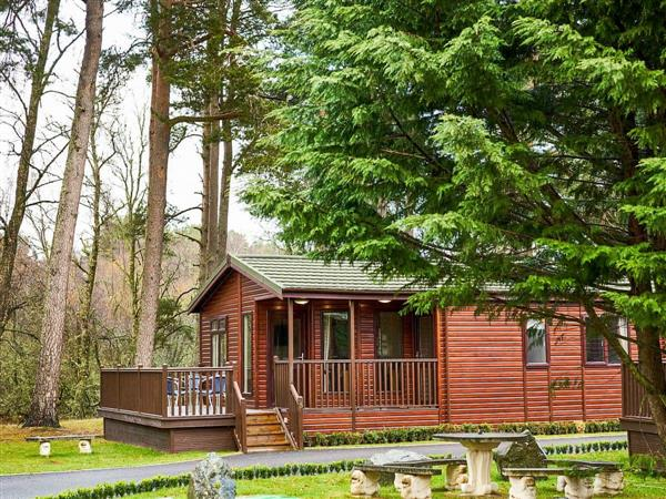 Royal Deeside Woodland Lodges- Lodge B, Dinnet, near Ballater, Aberdeenshire