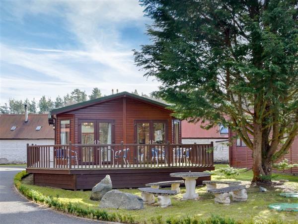 Royal Deeside Woodland Lodges- Lodge E, Dinnet, near Ballater, Aberdeenshire