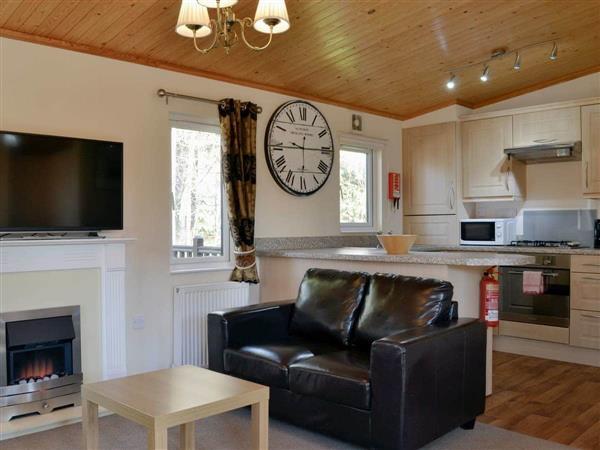 Royal Deeside Woodland Lodges- Lodge F, Dinnet, near Ballater, Aberdeenshire
