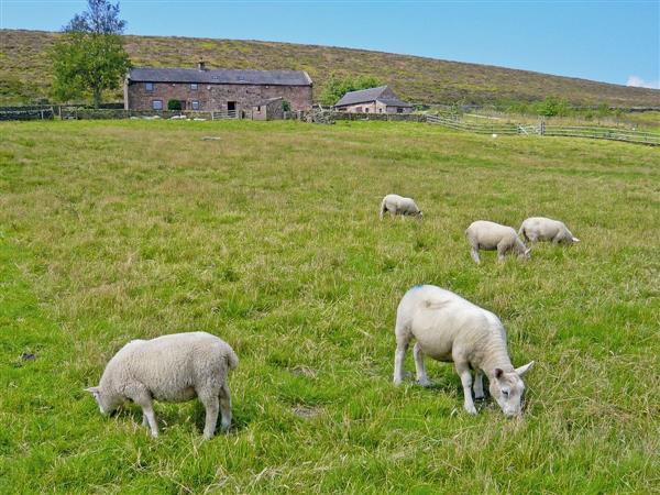 Shawside Farm in Staffordshire