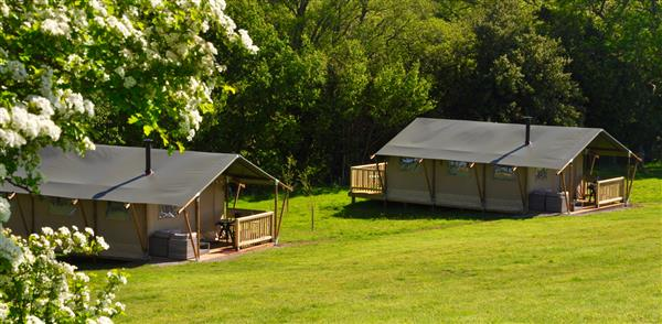 Sierra Safari Tent in Herefordshire