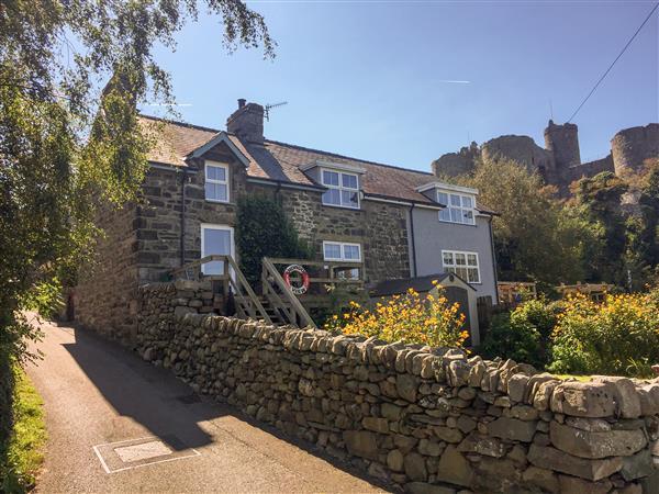 Snowdon View in Gwynedd