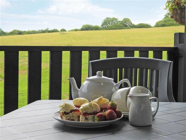 Springfield Meadows - Bluebell Lodge, Halwill Junction, near Beaworthy