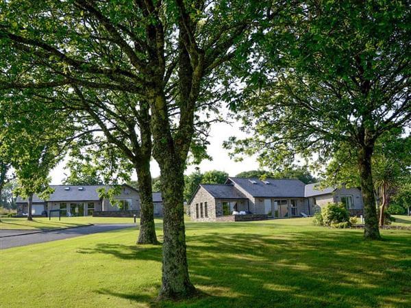 St Mellion International Resort - Treehaven in St Mellion, near Callington, Cornwall