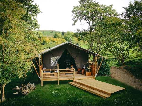 Stellar Safari Lodge in Powys