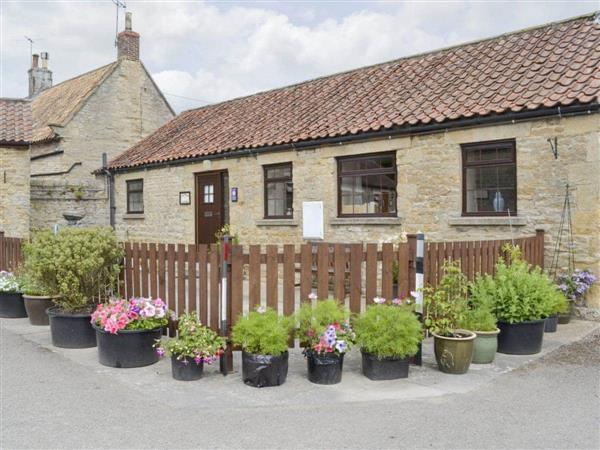 Studley House Farm Cottages - Cow Pasture Cottage in North Yorkshire